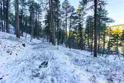Deadwood Residential Lots & Land For Sale: Revised Spring