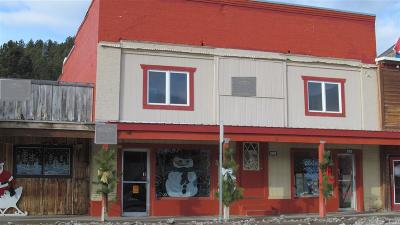 Pennington County Commercial For Sale: 285 Main