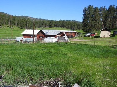 Custer County Single Family Home For Sale: 24967 North Pole