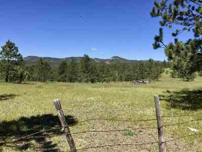 Pennington County Residential Lots & Land Other Contingency: 23526 Ditch Creek Road