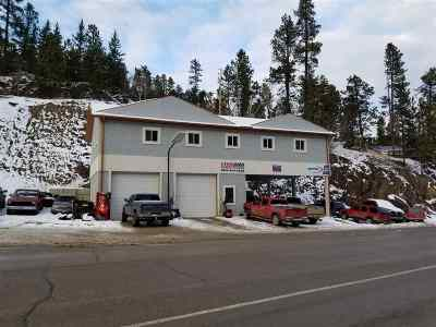 Deadwood, Lead Commercial For Sale: 11386 Us Hwy 14a