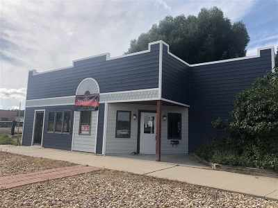 Commercial For Sale: 819 Mount Rushmore Road