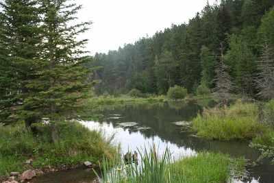 Deadwood Residential Lots & Land For Sale: Lot 1 2 Bit Road