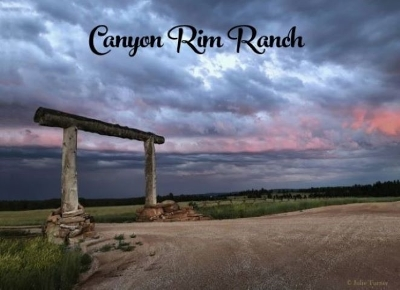Custer County Residential Lots & Land For Sale: Red Canyon