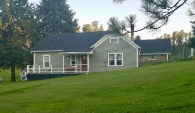 Custer County Single Family Home For Sale: 25267 S Hwy 385