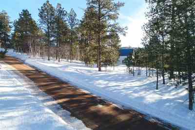 Deadwood, Lead Residential Lots & Land For Sale: Lot 4 Last Chance Trail