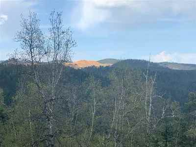 Deadwood Residential Lots & Land For Sale: Chinese
