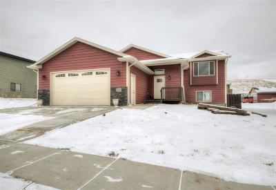 Sturgis Single Family Home For Sale: 2597 Meadows