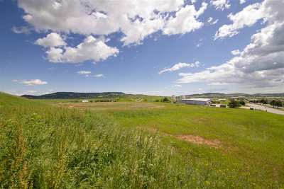 Spearfish Residential Lots & Land For Sale: Lot 2r-2 Blk 17 Paramount Drive