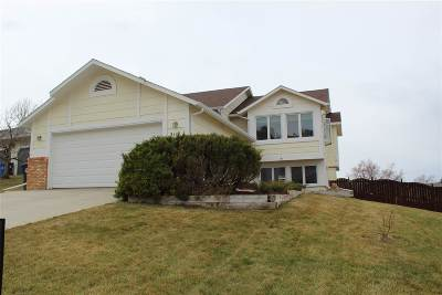 Pennington County Single Family Home For Sale: 2119 Westgate
