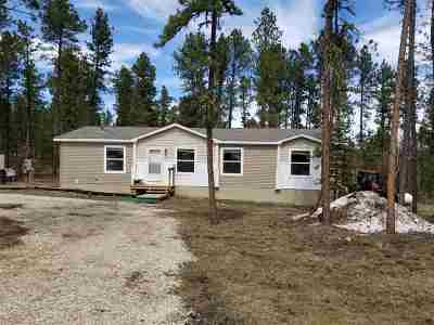 Deadwood, Deadwood Area, Deadwood/central City, Lead Single Family Home For Sale: 21132 Arapahoe