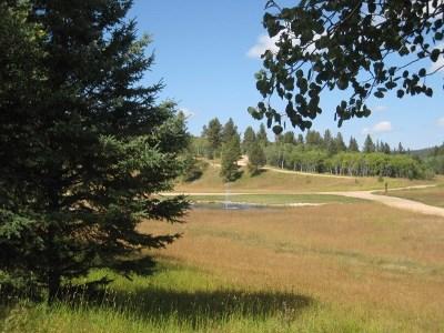 Deadwood, Deadwood Area, Deadwood/central City, Lead Residential Lots & Land For Sale: Brook Trout Loop