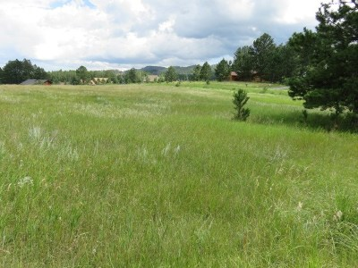 Custer County Residential Lots & Land For Sale: 106 Ox Yoke Court