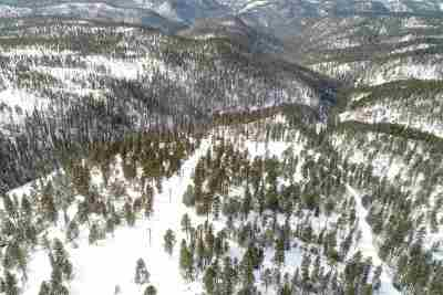 Deadwood, Deadwood Area, Deadwood/central City, Lead Residential Lots & Land For Sale: Terry Peak Summit