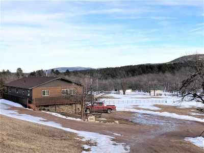 Sturgis Single Family Home For Sale: 11885 Mt Meadow