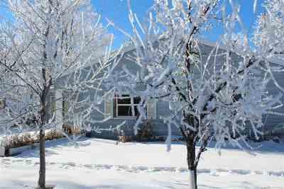 Newell Single Family Home For Sale: 509 Elmira