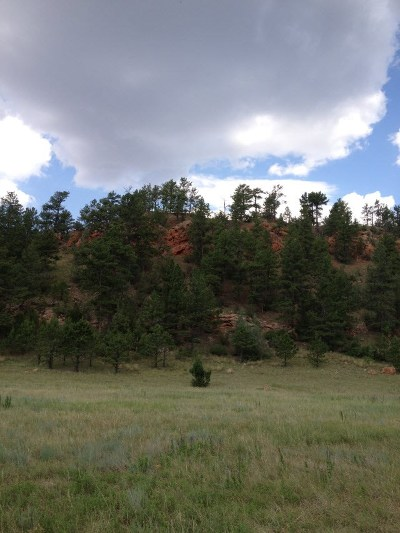 Custer County Residential Lots & Land For Sale: Tbd Hell Canyon Rd