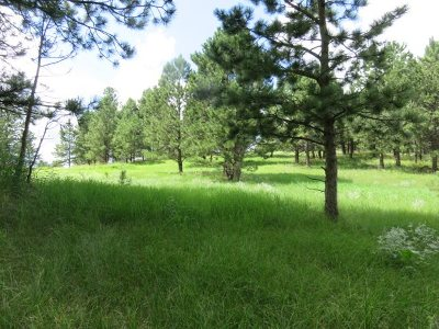 Residential Lots & Land For Sale: 116 Trails End