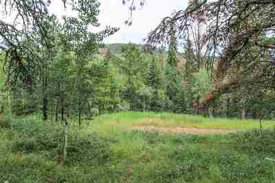 Deadwood, Lead Residential Lots & Land For Sale: Lot 9 Turkey