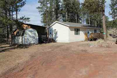 Hill City Single Family Home Uc-Contingency-Take Bkups: 447 Deegan