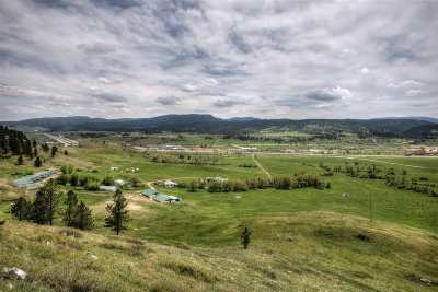 Butte County, Lawrence County, Meade County Commercial For Sale: 2881 Avalanche