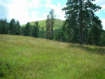 Deadwood Residential Lots & Land For Sale: Tract A Mattson Lane