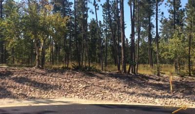 Deadwood, Lead Residential Lots & Land For Sale: Twilight Ct