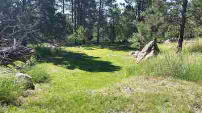 Sturgis Residential Lots & Land For Sale: North Ridge Trail