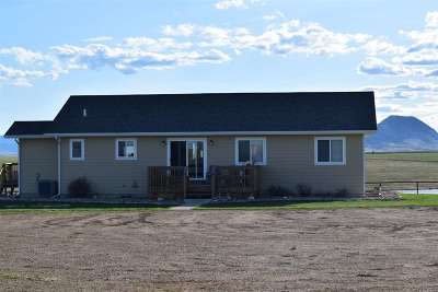 Sturgis Single Family Home For Sale: 13753 199th