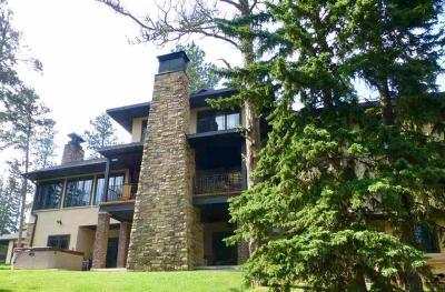 Deadwood, Lead Single Family Home For Sale: 11173 Alpine