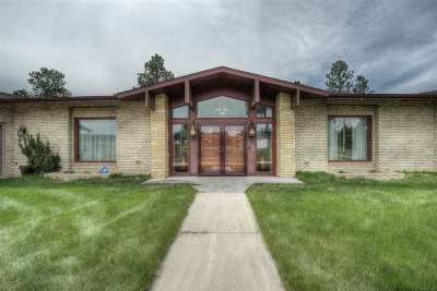 Custer SD Single Family Home For Sale: $594,900