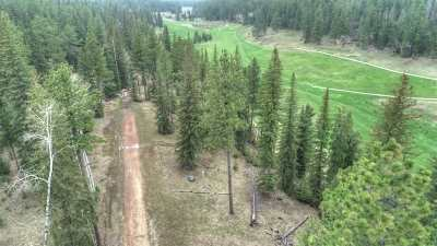 Deadwood, Deadwood Area, Deadwood/central City, Lead Residential Lots & Land For Sale: Lot 15 Ironwood Estates