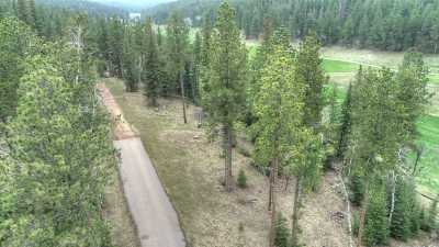 Deadwood, Deadwood Area, Deadwood/central City, Lead Residential Lots & Land For Sale: Lot 5 Ironwood Estates
