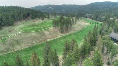 Deadwood, Lead Residential Lots & Land For Sale: Lot 4 Ironwood Estates