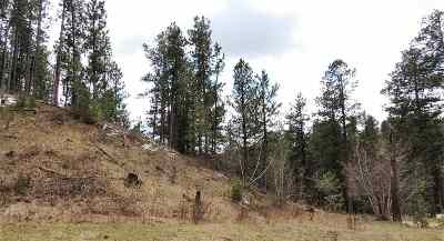 Deadwood Residential Lots & Land For Sale: Two Bit Rd.