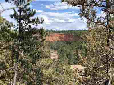 Custer County Residential Lots & Land For Sale: Farmer