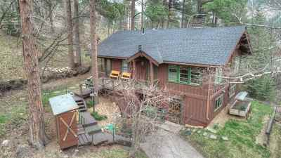 Spearfish Single Family Home Uc-Contingency-Take Bkups: 10612 Roughlock Falls Road