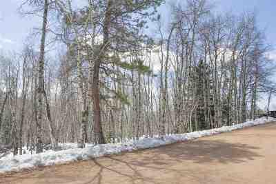 Deadwood, Lead Residential Lots & Land For Sale: Lot 2 Blk1 Tr C Last Chance