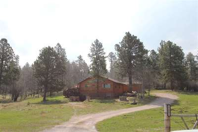 Deadwood, Lead Single Family Home For Sale: 22092 Us Hwy 85