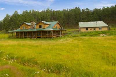 Custer Single Family Home For Sale: 11896 Emerald