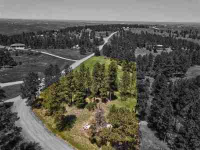 Belle Fourche Residential Lots & Land For Sale: 10990 Minnesela