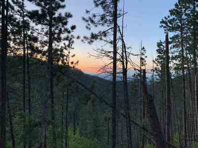 Spearfish Residential Lots & Land For Sale: M.s. 1376 Transit #6