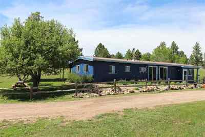 Hot Springs Single Family Home For Sale: 27063 Sd Hwy 89