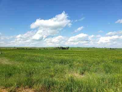 Farm & Ranch For Sale: Riley Rd
