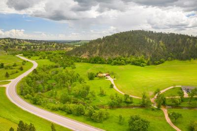 Hermosa Single Family Home For Sale: 14009 Sd Hwy 36