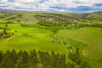 Hermosa Residential Lots & Land For Sale: 14011 Sd Hwy 36