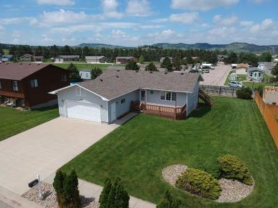Sturgis Single Family Home For Sale: 1313 1st