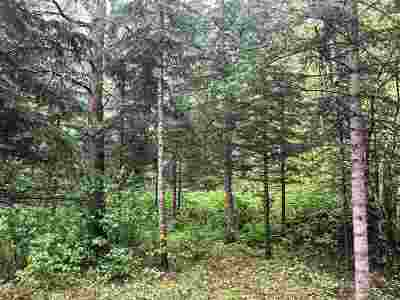 Deadwood Residential Lots & Land For Sale: Lot 16 Galena