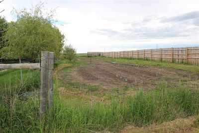 Sturgis Farm & Ranch For Sale: 13079 Cattail