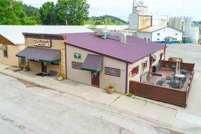 Butte County, Lawrence County, Meade County Commercial For Sale: 1010 Meade